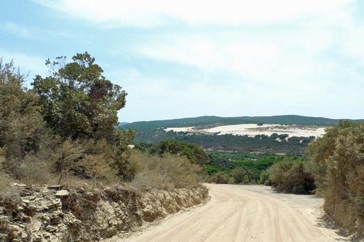 Piscinas Dunes, Sardinia, Italy. Photo by Costanza Giovannini