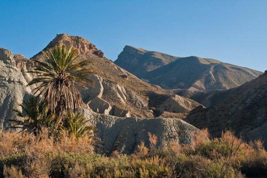 Tabernas Desert, Spain. Photo by Luis Daniel Carbia Cabeza