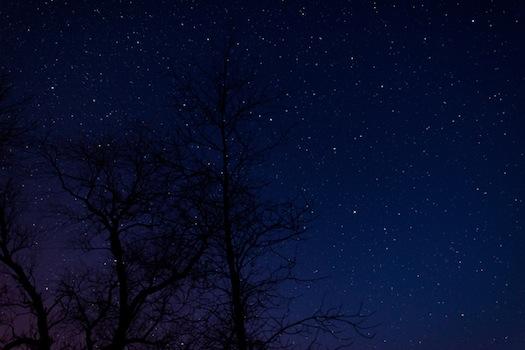 Starry Sky © vschlichting/iStock/Thinkstock