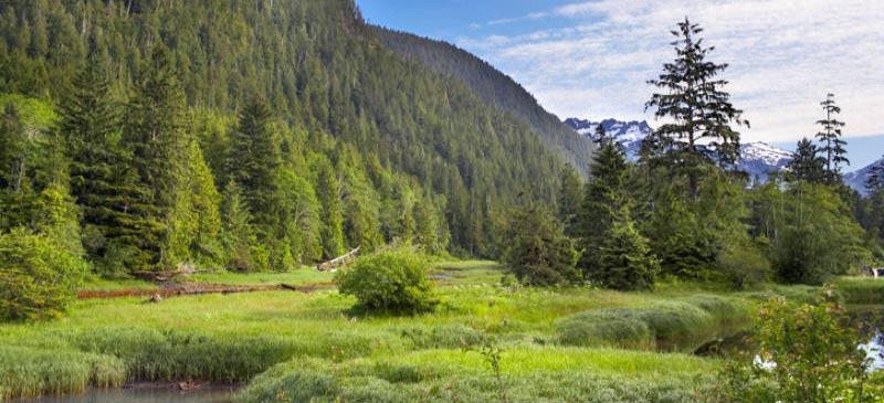 Top Eco Retreats To Escape To