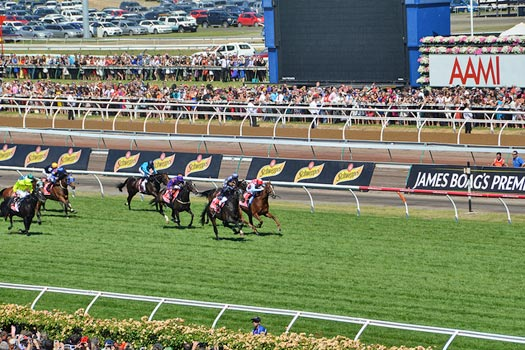 World Famous Melbourne Cup. Photo by Henry Ruuskanen