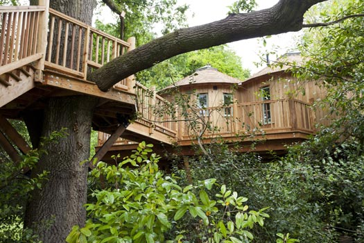 The Harptree Treehouse near Bath. WiFi and a pub 300 yards away.