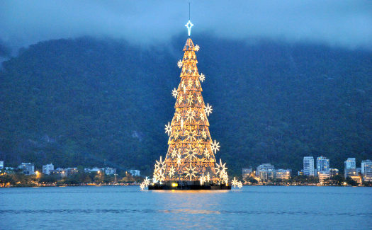 World's largest floating tree in Rio de Janeiro (Image: leandrociuffo)