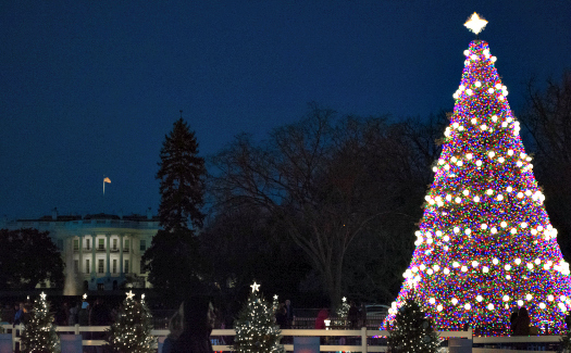 Christmas tree outside of The White House (Image: Tim Evanson used under a Creative Commons Attribution-ShareAlike license)