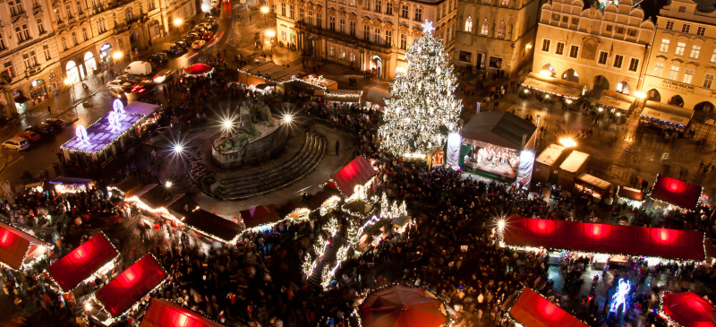 Top 10 Iconic Christmas Trees And Their Roots