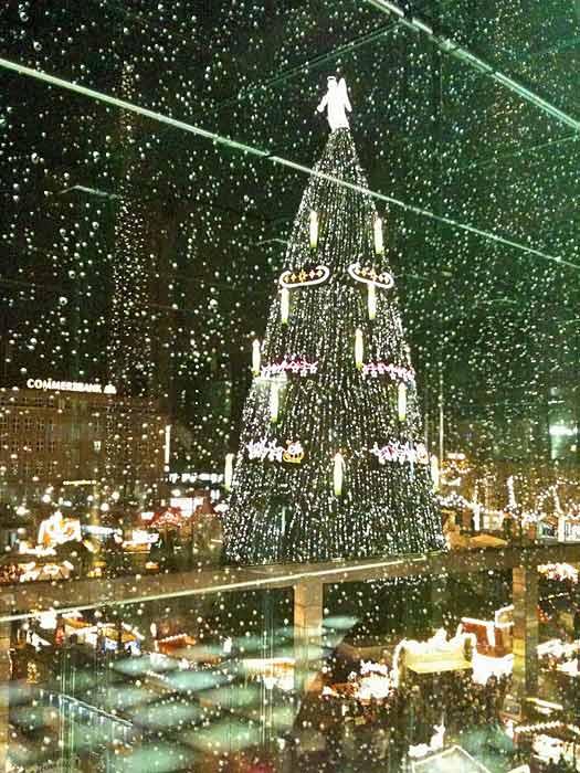 Tallest Christmas tree in Dortmund, Germany. Photo by Achim Hepp