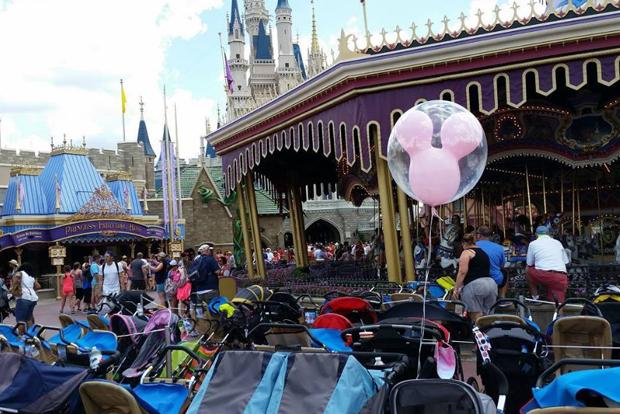 8 groups of people you'll meet at Walt Disney World Florida 1
