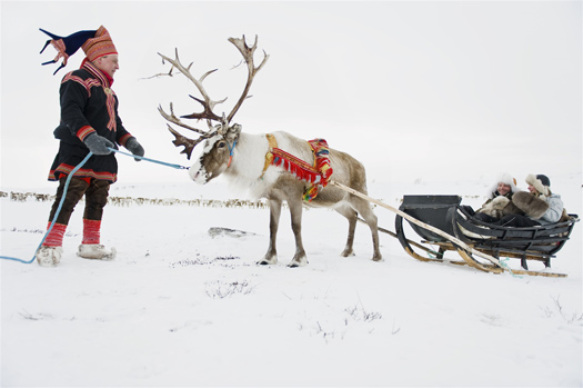 Sami and reindeer Norway Frozen